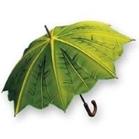 Как и чем почистить зонтик, чтобы он был всегда как новый?