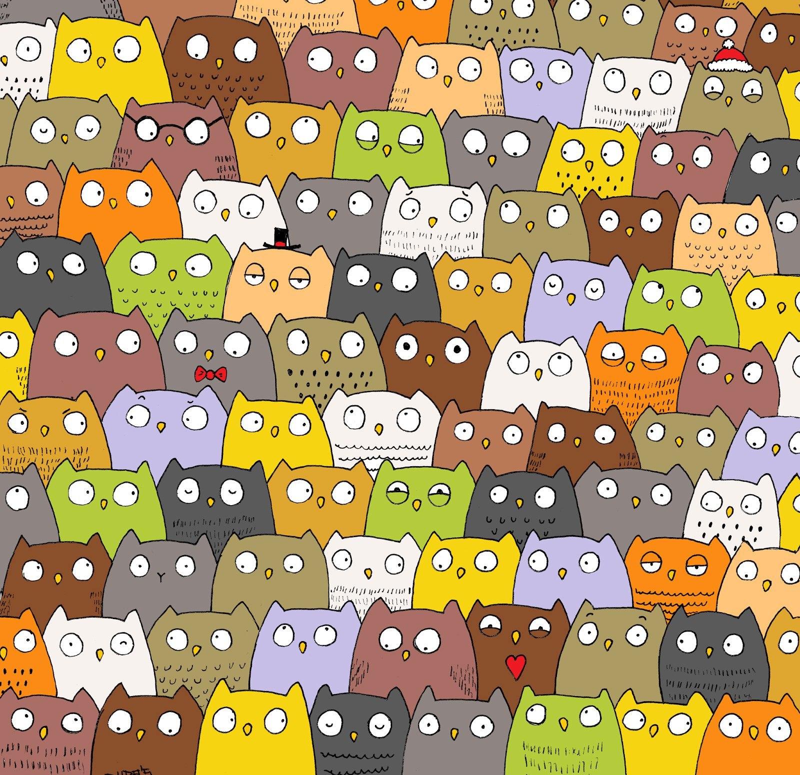 всем картинки на внимательность найди кота среди сов рассказала инстаграм